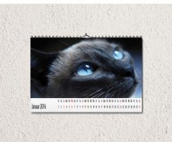 Fotokalender 2017 DIN A4 quer, Kalendarium 1