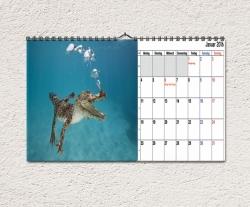 Fotokalender 2017 DIN A4 quer, Kalendarium 2