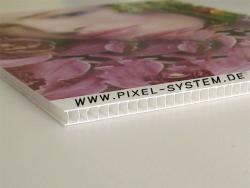 1 Stück Hohlkammerplatte Direktdruck 10x10cm (einseitiger Druck)